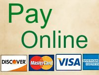 Pay-Online-1